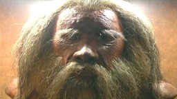 Homo Sapiens and the Upper Paleolithic