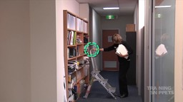 Office: Using a Step Ladder