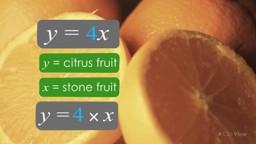 Algebraic Variables and Index Laws